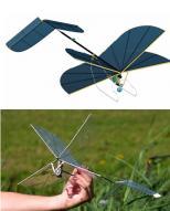 역행도 가능한 잠자리형 소형비행기 개발