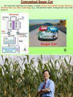 """美대학 """"설탕으로 움직이는 車기술 개발"""""""