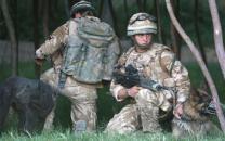 英특수부대, 전장에 '낙하산 탄 군견' 투입