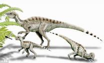 """""""공룡 맞아?""""…90cm 가장 작은 공룡 발견"""