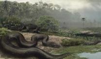 버스 길이 만한 '세상 최장 뱀 화석' 발견