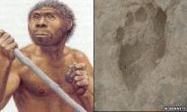 150만 년 전 호모에렉투스 발자국 첫 발견