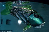 오염된 물 찾아내는 '로봇 물고기' 개발