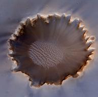 화성 적도에 있는 '소행성 충돌구' 포착