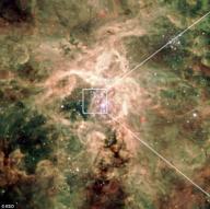 태양보다 1000만배 더 밝은 '괴물별' 발견
