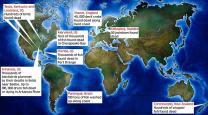 지구는 현재 '동물 묵시록' 진행중?