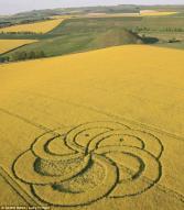 외계인 메시지?…영국서 꽃 모양 '크롭 서클' 발견