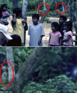 외계인?…아마존 정글서 '미확인 생명체' 포착 논란