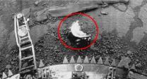 외계생명체?…금성에 '전갈' 닮은 물체 발견