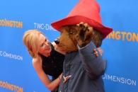 """니콜 키드먼, """"곰 패딩턴에게 아양 떠는데..."""""""