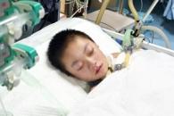 [월드피플+] 6명에게 장기 기증하고 떠난 11세 소녀