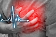 심장질환 예방하는 '변이 유전자' 최초 발견 (연구)