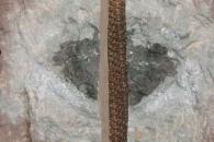 4억7000만 년 전, 지구에는 운석 비가 쏟아졌다
