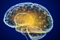 기억력 떨어지는 세 살 아이, 훗날 알츠하이머?(연구)