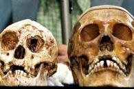 [와우! 과학] 난쟁이 '호빗'은 누가 죽였나?…용의자는 현 인류
