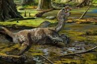 [다이노+] 닭처럼 볏 가진 신종 공룡화석, 中서 발견