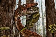 2억3000만년 전 살았던 공룡 화석 발견