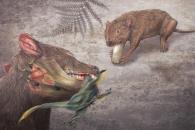 지구 역사상 최강의 '무는 힘' 가진 포유류 발견(연구)
