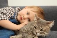'인면묘심?' …中, 친자식 팔아 고양이 산 '철부지 엄마'