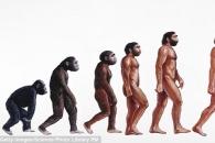 이유없는 고관절 통증, '진화' 때문이다 (연구)