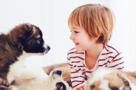 아이들, 형제보다 반려동물에게 만족감 더 커 (연구)