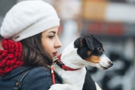 개도 '인간 됨됨이' 판단…사회성 낮으면 외면한다 (연구)