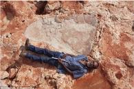 성인 남자 키 크기…세계서 가장 큰 공룡 발자국 발견