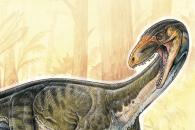잃어버린 진화 고리? 악어 닮은 '공룡 조상' 발견