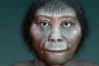 [와우! 과학] 키 106cm…인니 난쟁이 '호빗' 기원은 아프리카