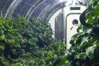 달, 화성에 건설할 NASA의 '우주 온실 프로젝트'
