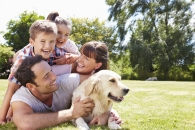 개가 '인간의 절친' 된 이유, 유전자에 있다(연구)