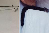 [애니멀 픽!] 대충 그린 고양이들…실제 모습과 똑같아 '폭소'