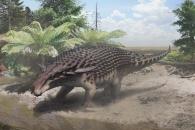 [다이노+] 공룡도 위장색을 지녔다…생생한 화석 발견