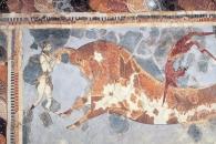 [와우! 과학] DNA가 풀어준 고대 그리스 문명의 수수께끼
