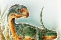 [다이노+] 육식+초식 반반 닮은 '프랑켄슈타인 공룡'의 비밀