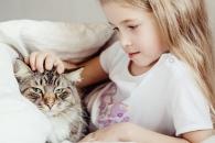고양이와 함께 자란 아이, 천식 덜 걸린다