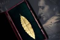 [월드경매+] 나폴레옹 왕관 황금 월계수 잎 8억원 낙찰