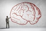 두뇌에 직접 '정보' 주입…원숭이 실험 성공했다