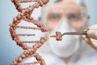 유전성 난청, 유전자 가위로 막는다…쥐 실험 성공