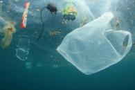 [와우! 과학] 175만개 미세 플라스틱 돼 돌아오는 비닐봉투