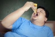 [와우! 과학] 뚱뚱한 애 옆에 또 뚱뚱한 애…비만도 전염된다