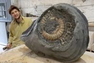 개와 산책하다 2억년 된 암모나이트 화석 발견한 청년