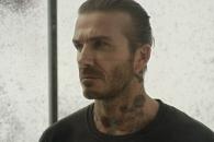 베컴, '모기 1만 마리' 있는 유리방에 들어간 이유는?