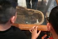 고대 이집트서 역모죄로 죽은 '절규하는 미라' 공개