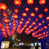 춘절 연휴, 중국 국내 관광수입 약 81조 원 집계