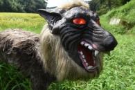 로봇 강국 日에서 탄생한 늑대 로봇…용도는?
