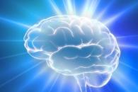 [와우! 과학] 나이 들어도 '새로운 뇌세포' 생성된다