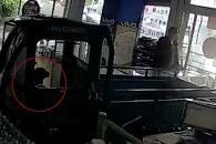 [여기는 중국] 휴대폰 매장에 돌진한 차…운전자는 바로 강아지