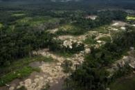 아마존, 벌채로 죽어간다…지난해 축구장 20만 개 규모 사라져