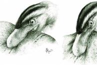 중생대 수각류 육식 공룡은 어떻게 먹고 살았을까?